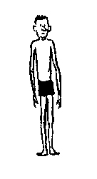 Ectomorph Body